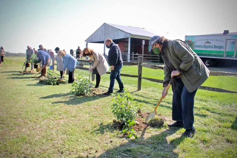 State and local officials plant butterfly bushes at the groundbreaking for the Laurel Run Land Stewardship Center in Delran, N.J. (Emma Lee/WHYY)