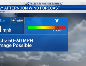 Winds could gust at 50 to 60 mph Friday. (NBC10)