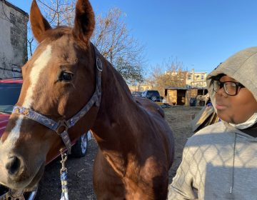 Nahye Hyman stands next to a horse