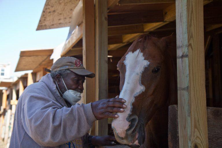 "Ellis Ferrell, 81, founder of the Fletcher Street Urban Riding Club, feeds a mint to a horse called ""El Dog."