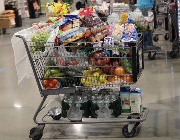 A shopper's full cart on line at the ShopRite