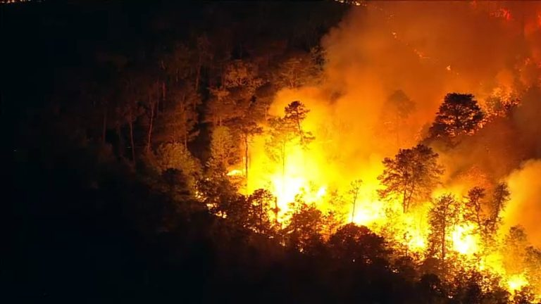Crews battle a wildfire along Route 9 in Little Egg Harbor Township.