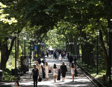 People walk along University of Pennsylvania's campus in the spring