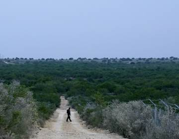 A Border Patrol agent walks along a dirt road near the U.S.-Mexico border, in Roma, Texas, in May. (Gregory Bull/AP)