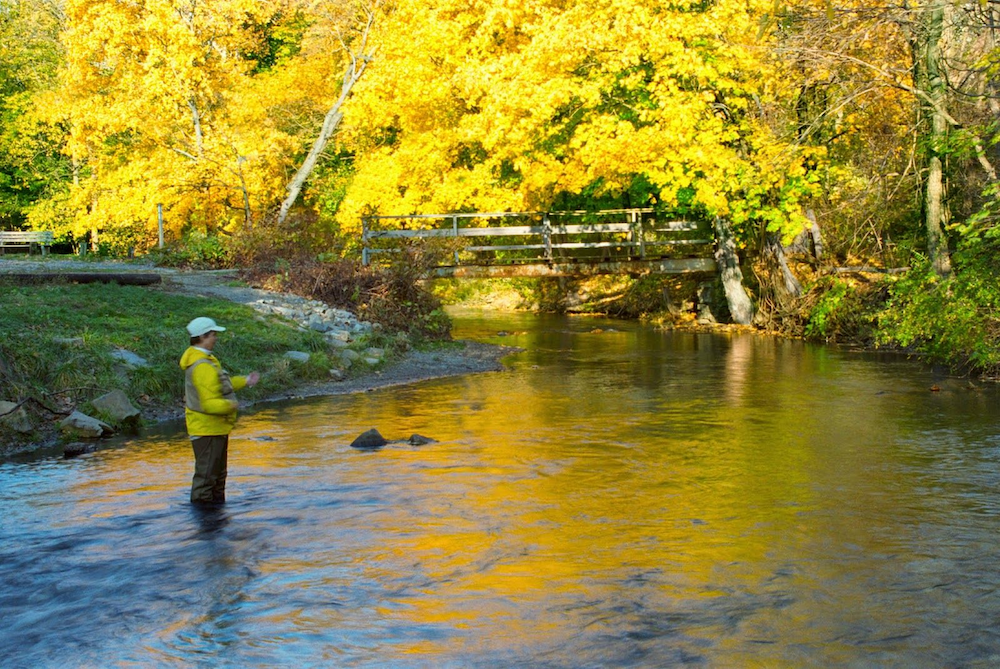 A fly fisherman stands in water