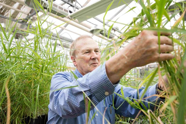 Ed Guinan, a professor of astrophysics and planetary sciences at Villanova University, has been experimenting to see what could grow on Mars. (Courtesy of Ed Guinan)