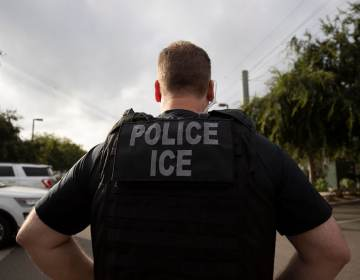 An Immigration and Customs Enforcement officer is seen from behind.