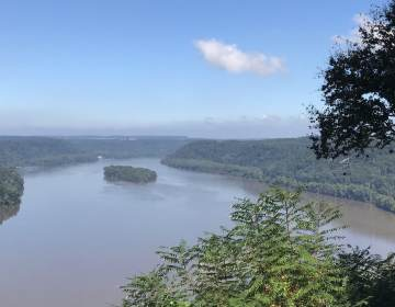 The Pinnacle Overlook offers views of the Susquehanna River's Lake Aldred in Susquehannock State Park, Lancaster County. (Marie Cusick / StateImpact Pennsylvania)