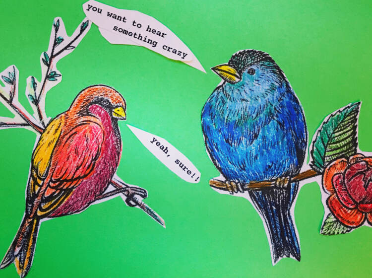 An illustration of two birds talking to each other