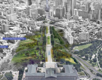 An artist's rendering shows the Benjamin Franklin Parkway as reimagined by the Philadelphia firm DIGSAU and DLANDstudio of New York. (DIGSAU and DLANDstudio)