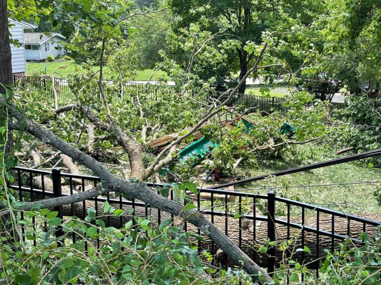 Trees crushed the playset of Chris Burke and Christina Lennon in Flourtown. (Courtesy of Burke and Lennon)