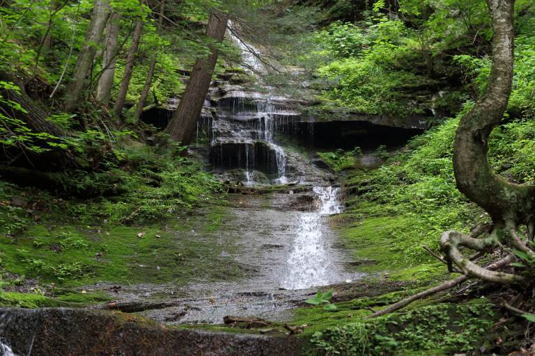 The lowest parts of Turkey Path Trail are along a series of waterfalls at Colton Point State Park.