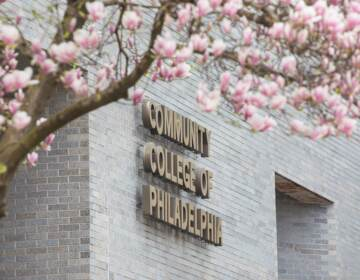 The exterior of a Community College Philadelphia building, with cherry blossoms in view.