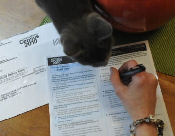 Rosalee the cat helps a Reading resident fill out her 2010 Census form.