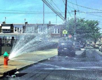 A fire hydrant is open on a city street