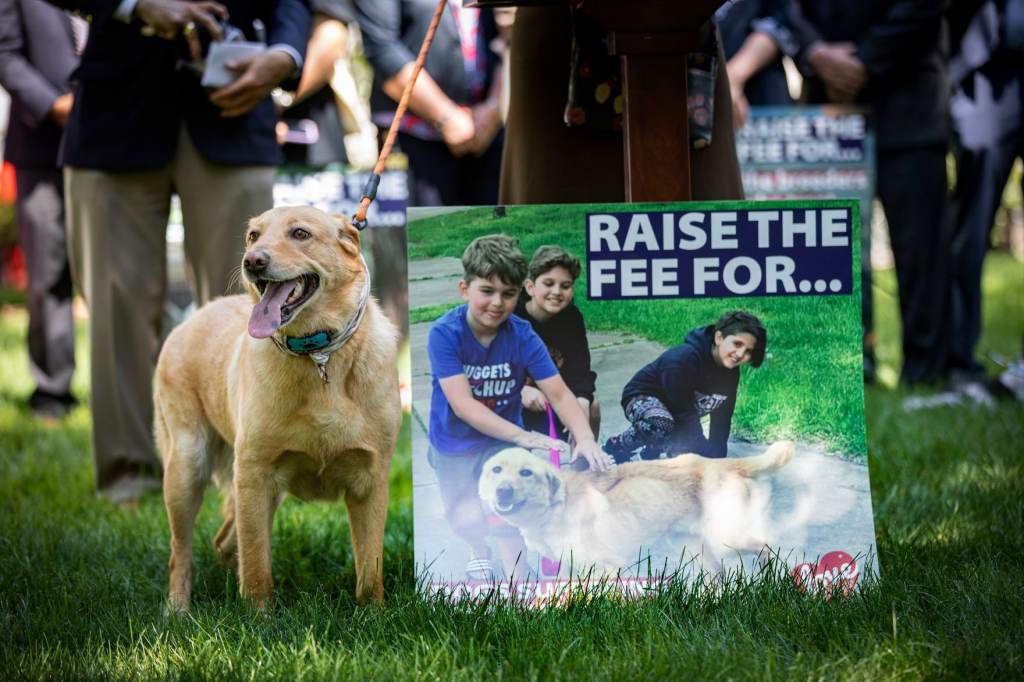 Levi Fetterman stands by a sign advocating for raising the licensing fee paid by dog owners
