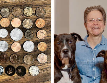 Pennies lay on a table; Lisa Phillips with her rescue dogs Charlie and Daisy
