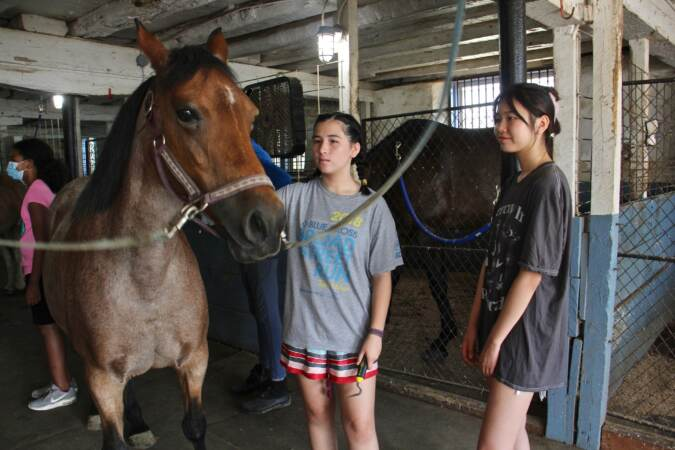 Violinists Nancy Li (left) and Kera McCarthy take turns grooming a horse