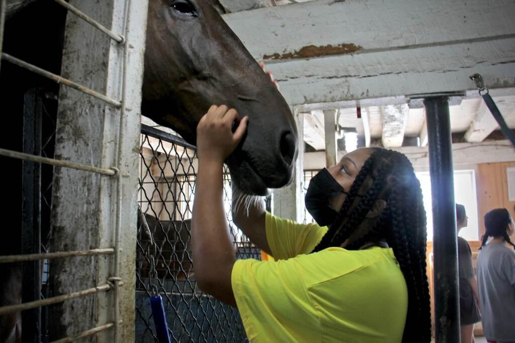 Lashawnna Levy caresses Jameson the horse