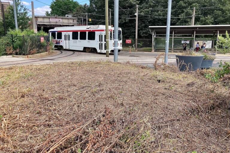 A razed pollinator garden at the 40th Street trolley portal