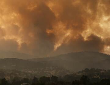 Smoke spreads over Parnitha mountain during a wildfire in the village of Ippokratios Politia