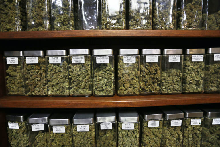 Glass containers display varieties of marijuana for sale on shelves