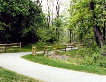A fenced trail at White Clay Creek State Park