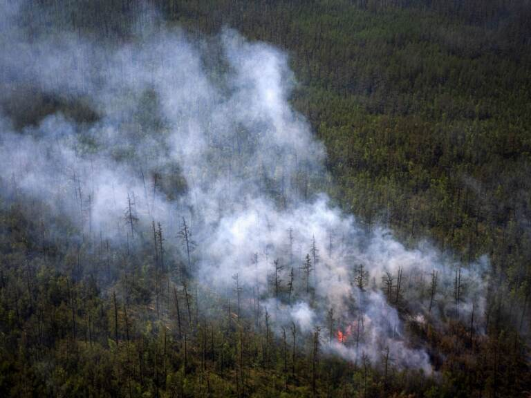 This aerial photo taken from an airplane on July 27 shows smoke rising from a forest fire outside the village of Berdigestyakh in Russia's Sakha Republic in northeastern Siberia. (Dimitar Dilkoff/AFP via Getty Images)