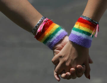 A lesbian couple hold hands during the annual Gay Pride rally, on June 8, 2007. Recent survey data shows that LGBTQ adults in the U.S. are more likely to report higher rates of food and economic insecurity. (David Silverman/Getty Images)