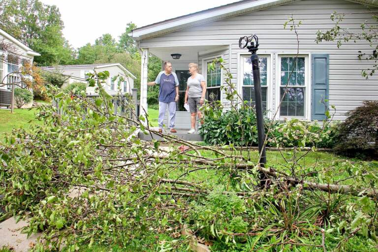 Mel and Olga Cohen stand on their front porch, with a fallen tree on their lawn