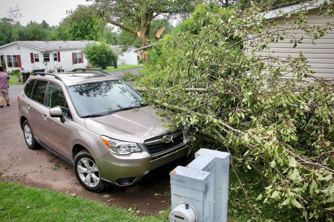 Uprooted trees and fallen branches are pictured on top of a car