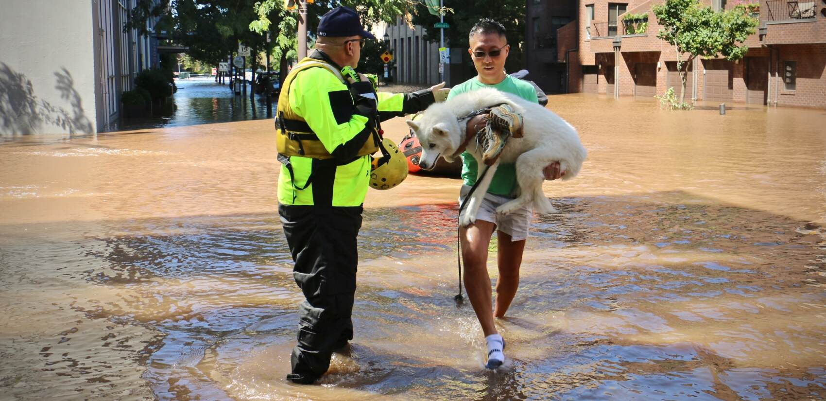 Dog owner carries husky to safety amid flooding.