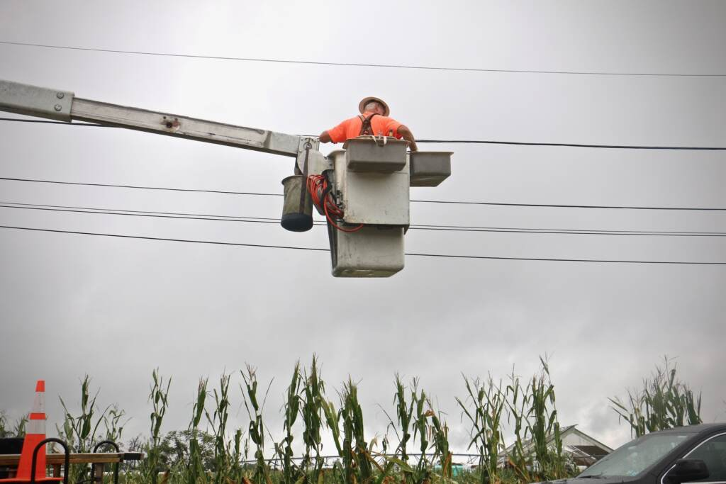 A utility worker repairs wires at Wellacrest Farms