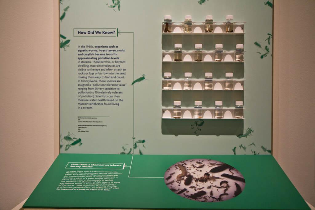 Downstream Exhibit at the Science History Institute in Philadelphia