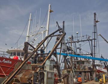 Men work on fishing ships at Dockside Packing in Atlantic City, N.J. (Kimberly Paynter/WHYY)