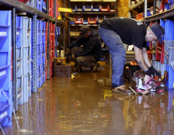 Louis Dearani, Jr., right, helps to clean up after his family business, United Automatic Fire Sprinkler, was flooded in Woodland Park, N.J., Thursday, Sept. 2, 2021. (AP Photo/Seth Wenig)