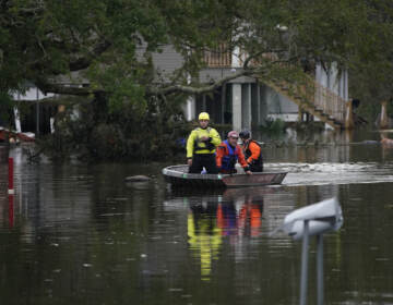 Animal rescue drive a boat down a flooded street