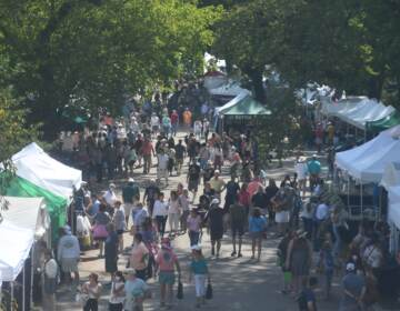 Thousands of people were at the Brandywine Arts Festival over the weekend