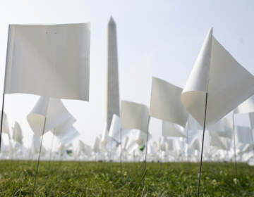White flags stand near the Washington Monument on Tuesday. The flags, which will number more than 630,000 when the temporary art installation on the National Mall is completed, are part of artist Suzanne Brennan Firstenberg's In America: Remember, honoring Americans who have died of COVID-19. (Patrick Semansky/AP)