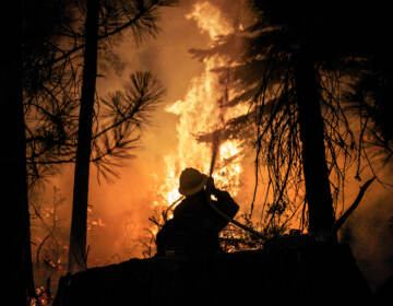 A firefighter with the U.S. Forest Service protects the Strawberry General Store on Highway 50 in El Dorado County after a backfire was set, Saturday, Aug. 28, 2021, against the advancing Caldor Fire