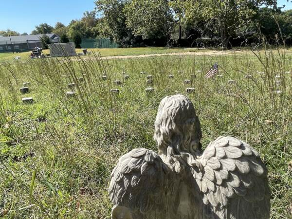 A stone angel stands amid the numbered graves in the Spiral Cemetery