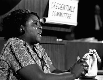 In this Aug. 22, 1964 file photograph, Fannie Lou Hamer speaks before the credentials committee of the Democratic national convention in Atlantic City.  (AP Photo/File)