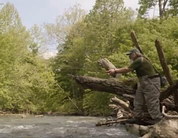 "A still from ""A River Reborn."