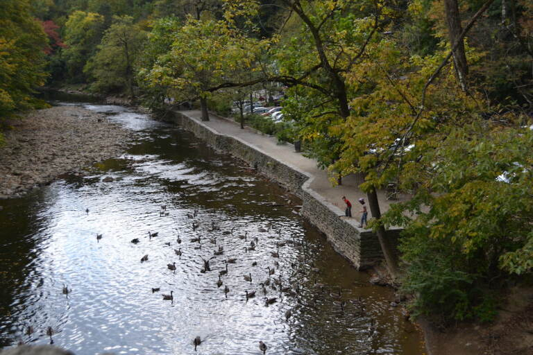 Wissahickon Valley Park.
