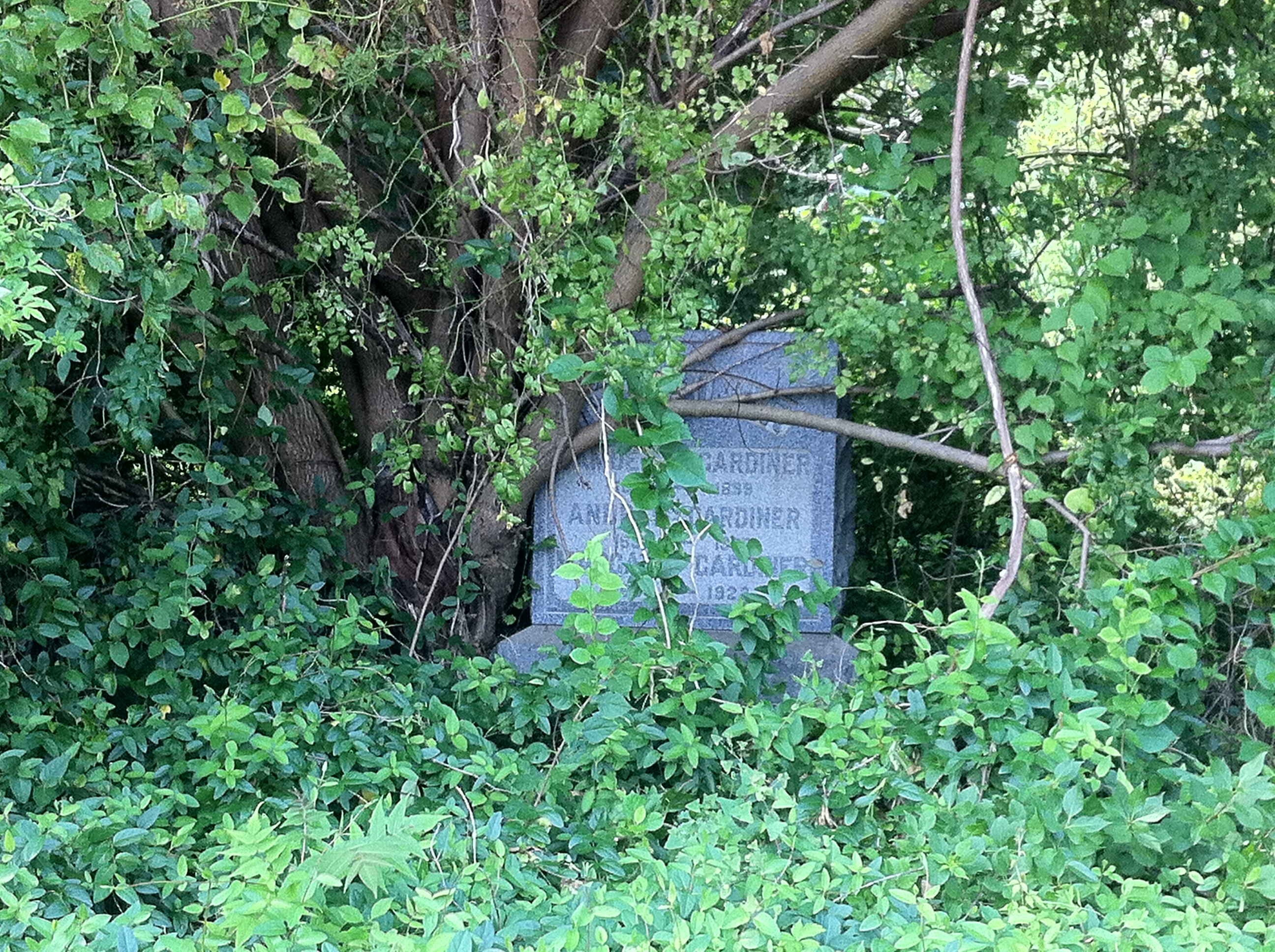Holding out hope for Mount Moriah Cemetery
