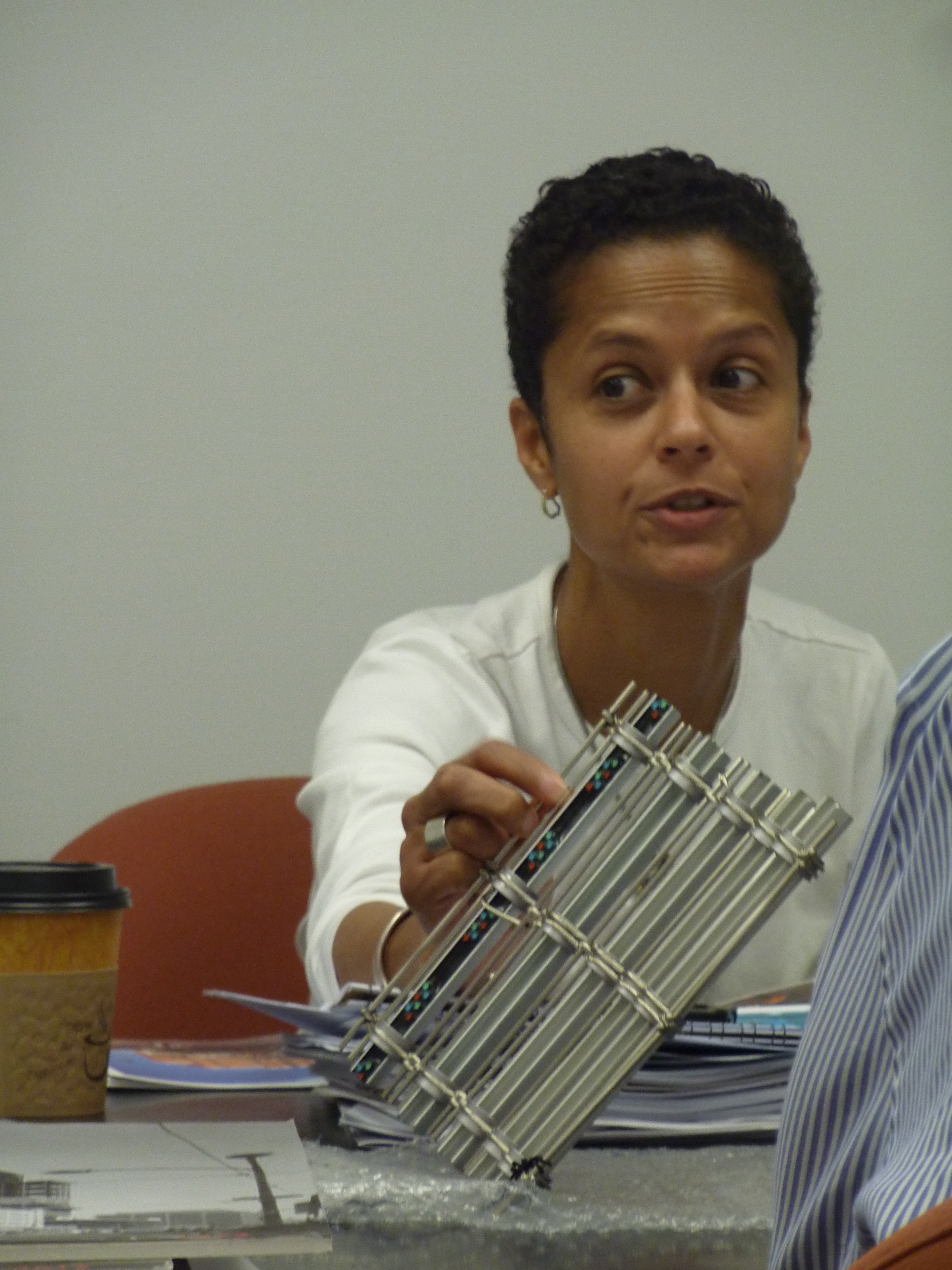 Committee Chair Dominque Hawkins with mesh sample