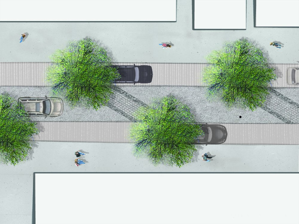 A closer look at the prospective future, including the travel lane, trees and parking