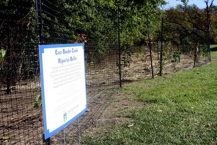 Watershed partnership plants riparian buffer at Abington Junior High