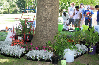 Frankford residents visited Overington Park Saturday to purchase plants donated by local gardeners to help raise money for future park events. Photo/Frankford Gazette