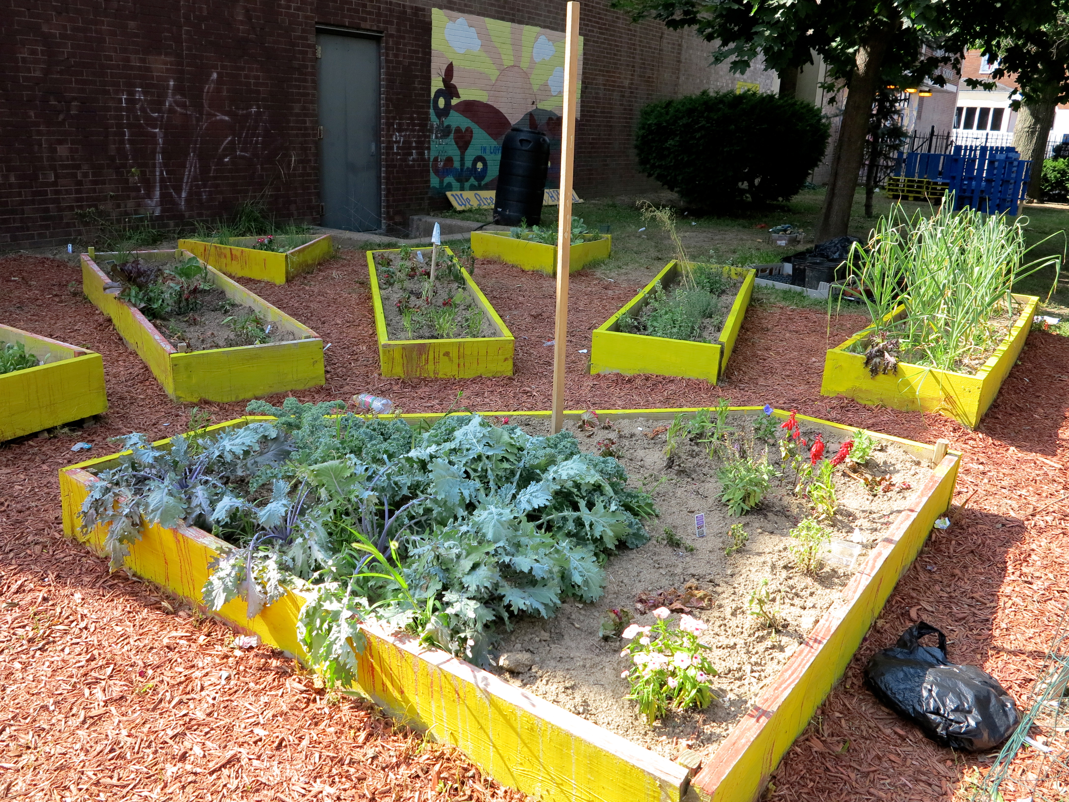 Huey Elementary's repainted, planted and weeded raised beds in a sunburst pattern.